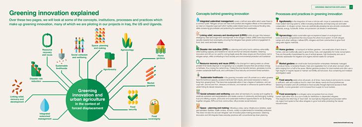 Lemon Tree Trust Infographics Design
