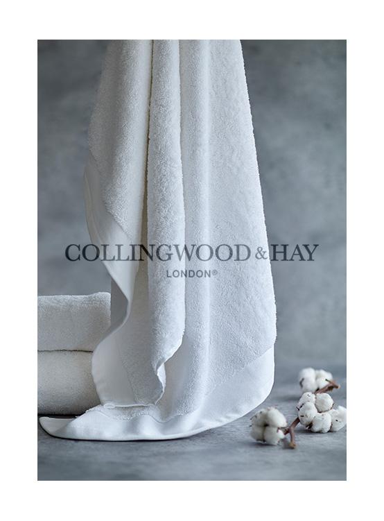 Collingwood & Hay