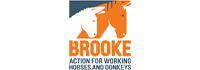 nim design works with The Brooke